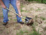 Full-Size Pointed Shovel